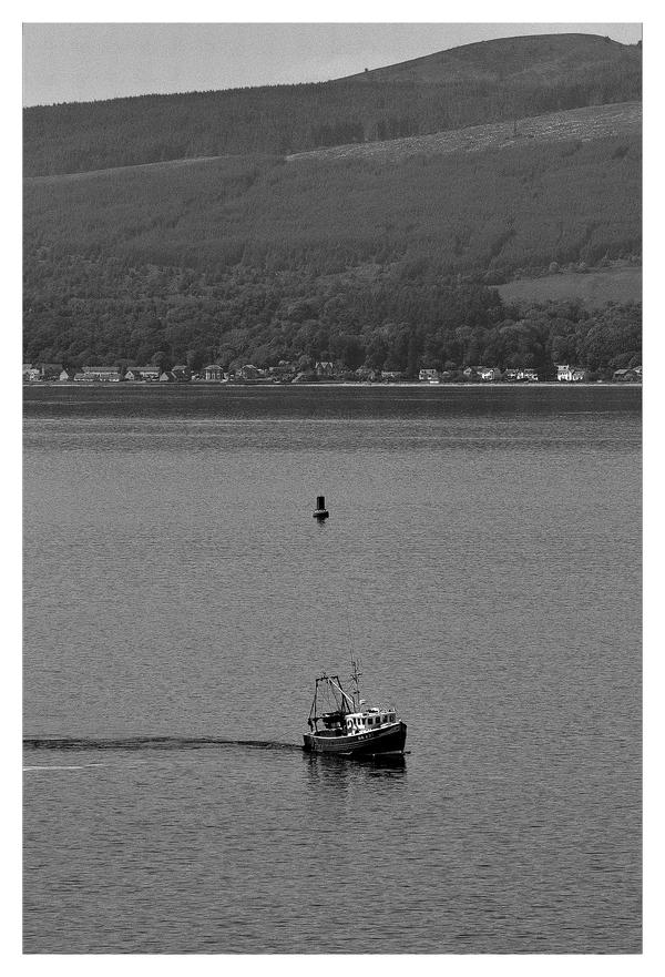 Pride of Wales GK 291 by Dr-Koesters