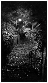 Night walk BW