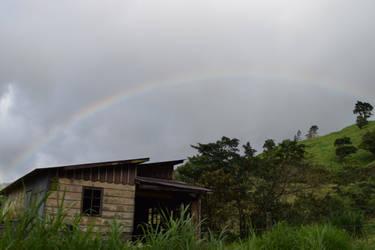 Costa Rican Rainbow #2