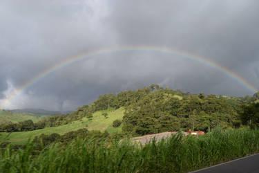 Costa Rican Rainbow #3