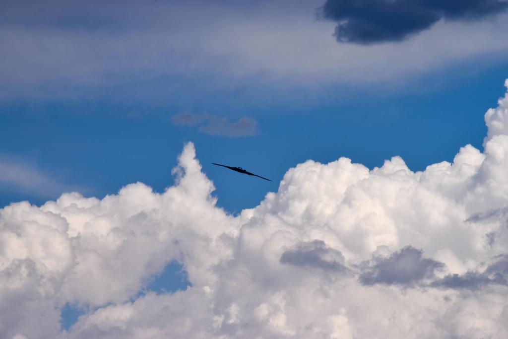 B-2 Bomber Profile by RozenGT