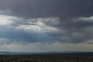New Mexico Desert 1