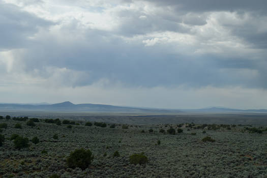 New Mexico Desert 2