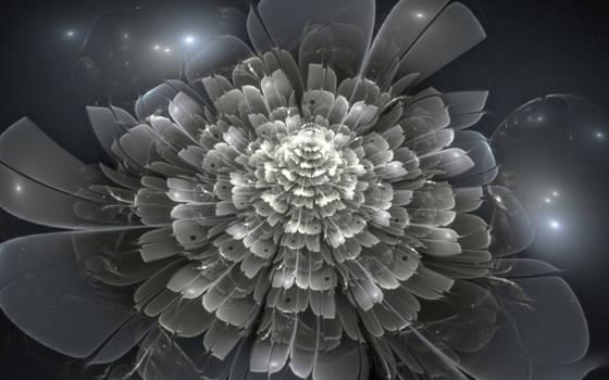 Silvercordia by Kancano