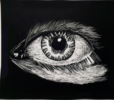 Scratch Paper Eye (Old/Very Late Upload)