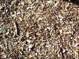 Mulch Texture 3 by retrieved-fiend
