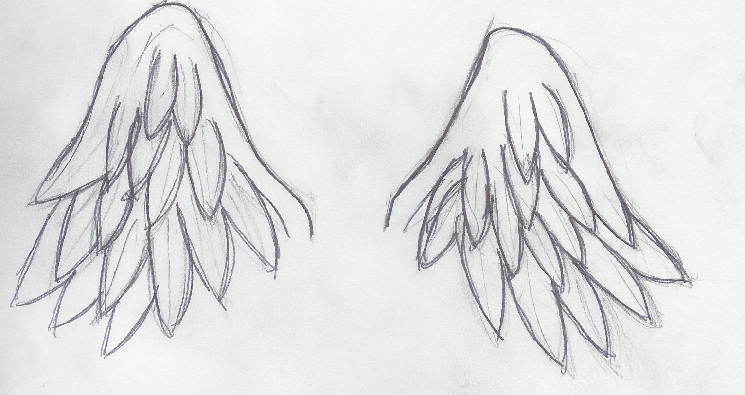 Angel wings by Pikoto on DeviantArt
