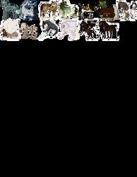 pixel masterpost (new)