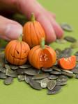 Miniature Pumpkins, Halloween Style