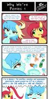 SDC - Why We're Ponies 1
