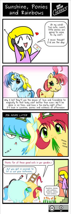 SDC - Sunshine, Ponies and Rainbows