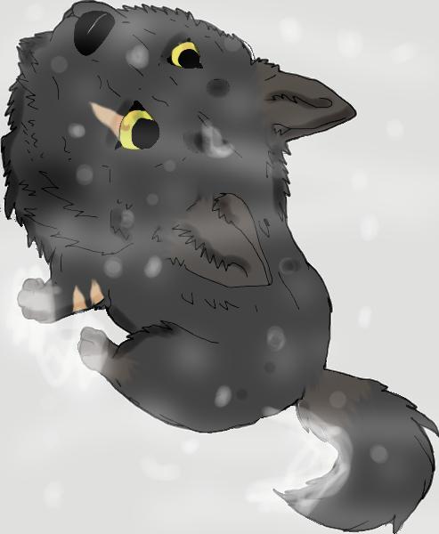 wolfXDlove's Profile Picture