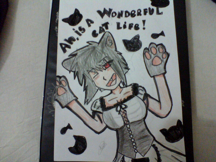 Ah,is a wonderful cat life by wolfXDlove