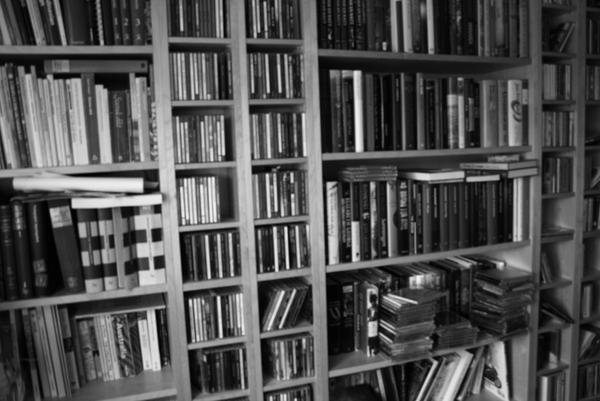 Bookcase by Ermenelwen