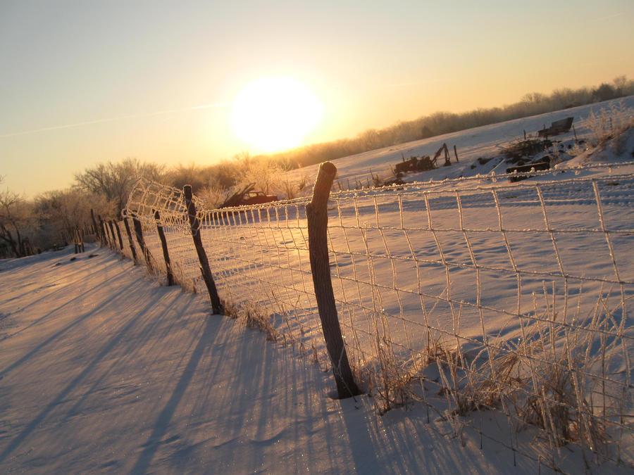 Winter Morning by hollyllama8545