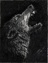 Drawing:   'Alpha's Cry' by AiSolare