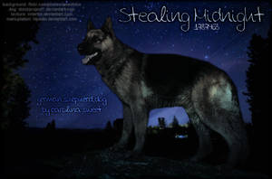 Stealing Midnight by hlpedin