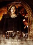 Fan Promo Poster Harry Potter7