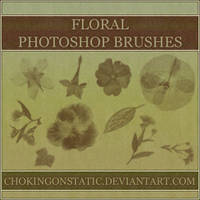 floral brushes by chokingonstatic