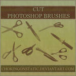scissor and knife brushes