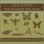 bug brushes