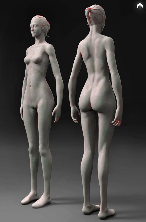 Female Anatomy FREE Download by fumanshooh on DeviantArt