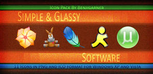 Simple and Glassy Software