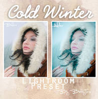 Cold winter preset by Alessia-Izzo