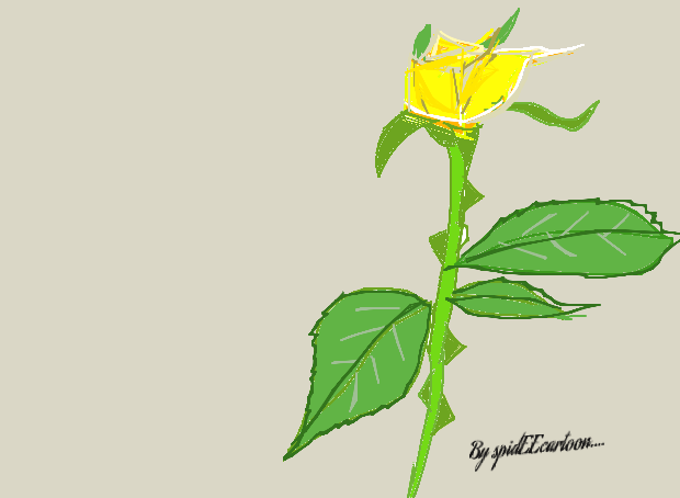 Yellow rose by Spideecartoon