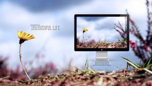 Wonderful Life by fancq
