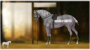 FREELINE: Jumper Horse