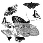 Ischarm Butterfly Brushes