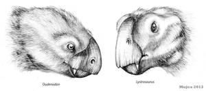 Oudenodon and lystrosaurus comparison