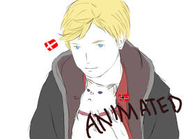 APH: The norwegian cat by Marty-McAwesomille