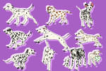 Dalmatian Doodles