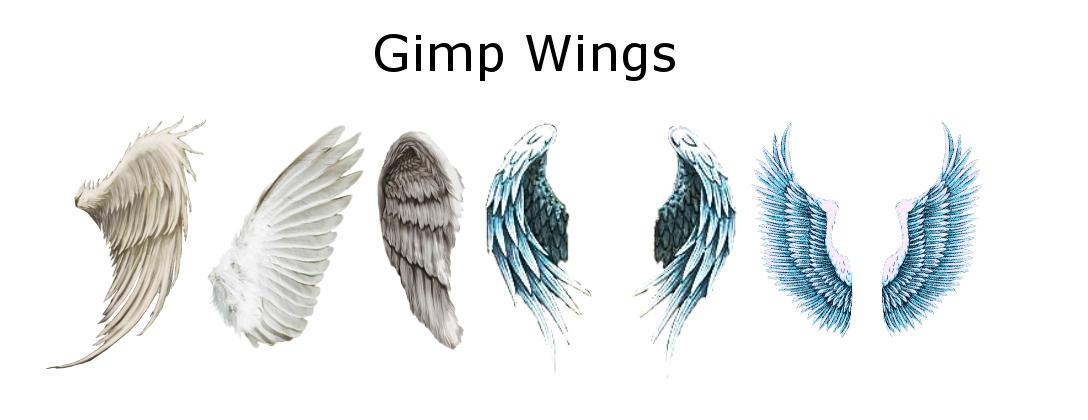Wings by Geosammy