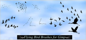 Gimp Flying Birds