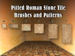 Pitted Roman Stone