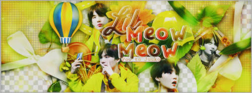 [24072018] TAKING REQUEST #6 - LIL MEOW MEOW by Poo-chan-kawaii