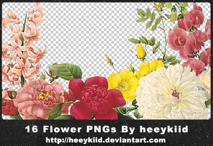 16_Flower_PNGs_By_heeykiid by heeykiid