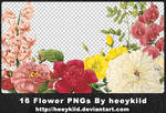 16_Flower_PNGs_By_heeykiid