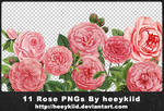 11 Rose PNGs By heeykiid