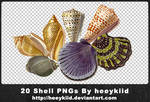 20 Shell PNGs By heeykiid