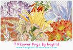 7 Flower Pngs By heykid