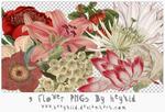 9 Flower PNGs By heykid