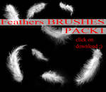 Feathers BRUSHES PACK 1