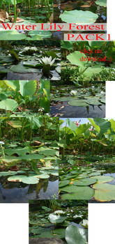 Water Lily Forest Pack