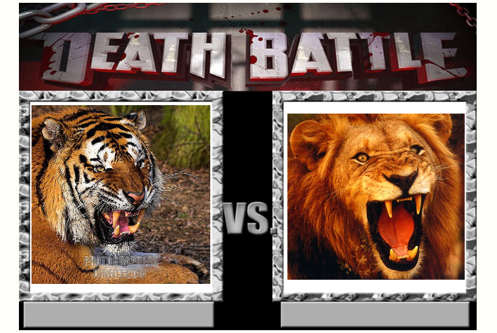Death Battle 1: Tiger vs Lion by Kiryu2012 on DeviantArt