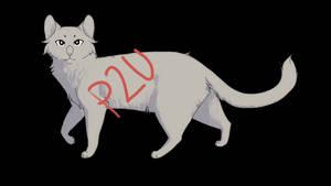 P2U Cat Lines