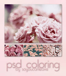 PSD COLORING pink rose. by SoYouCanLeave